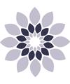 Formations Reiki et Espace bien-être